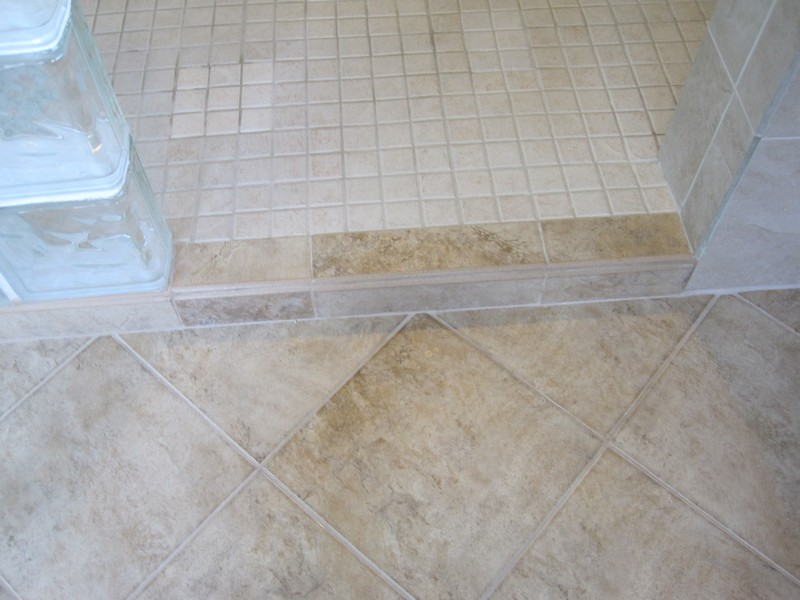 Shower entry.  Notice change in tile patterns mark step.